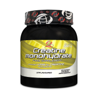 AllSports Labs Creatine Monohydrate (500 gr.)