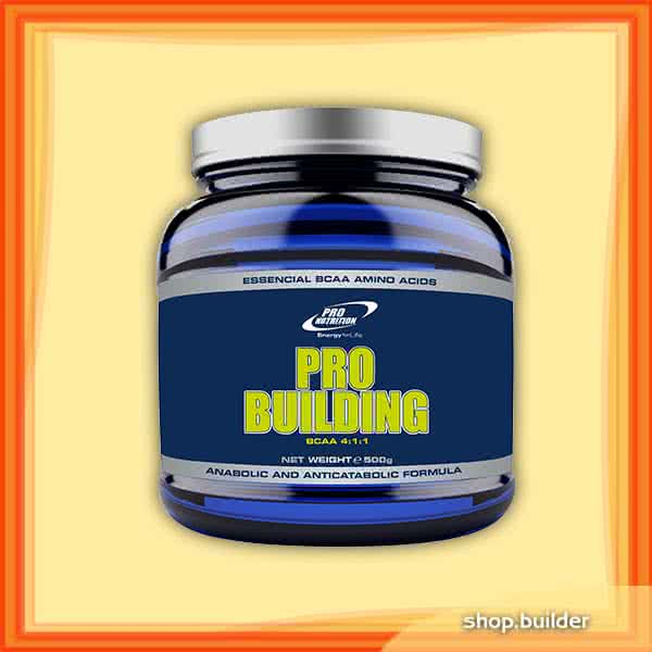 Pro Nutrition Pro Building 500 gr.